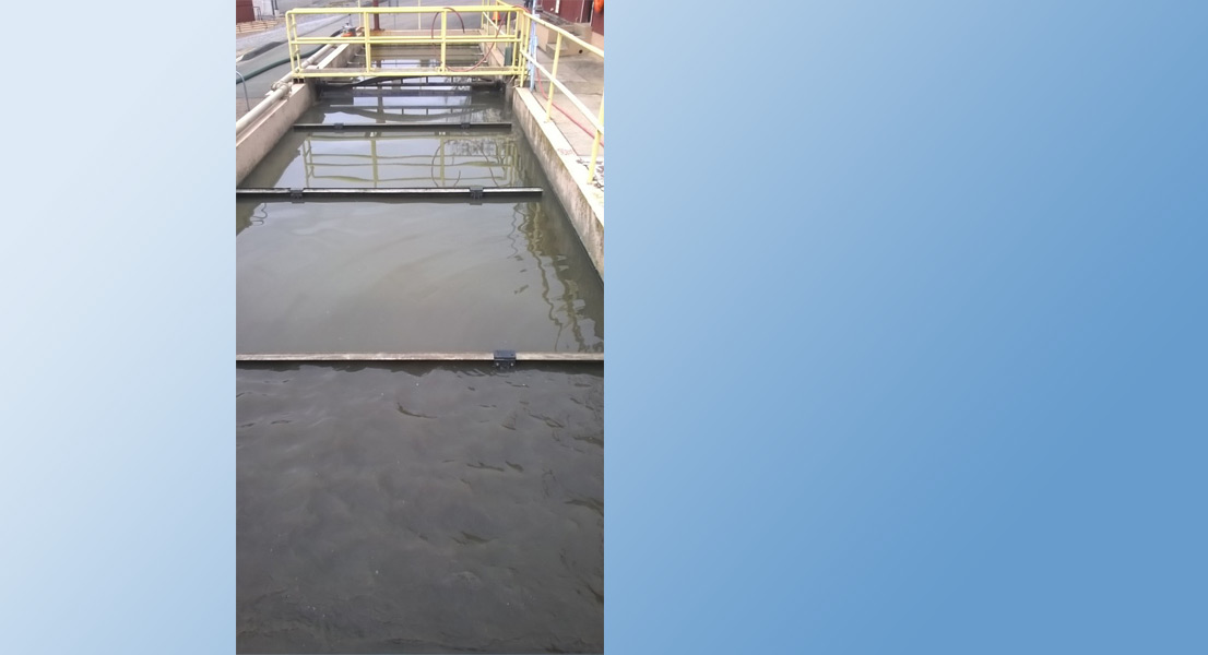 The Primary Clarifier is a large tank where the wastewater is caused to slow down enough so that the suspended solids in the water can either sink to the bottom as sludge, or float to the surface as scum. The sludge and scum are then skimmed off and pumped to the Anaerobic Digester for further treatment.